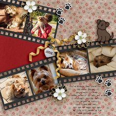 Love is a 4-Legged Word – Bundle by Created by Jill https://www.pickleberrypop.com/shop/product.php?productid=49110