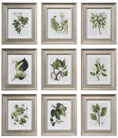 Create a gallery wall of botanical flora and fauna prints for a natural look.