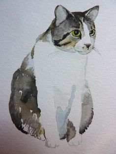 How.to paint a cat part 3