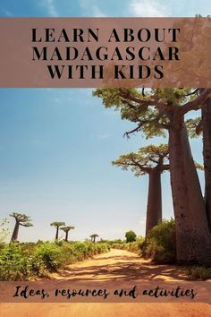 Learn about Madagascar with kids: activities and resources