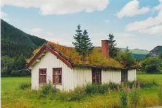 Prachtig begroeid huisje in Hemsedal