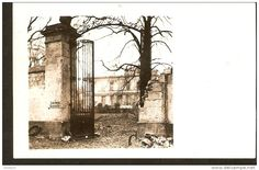 Germany, Zum Schlosskeller Bruienkeller keller - photo postcard - echte photographier - to identify - 1910 - 1919