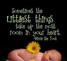 Sometimes the littlest things take up the most room in your heart.  ~Winnie the Pooh #babies