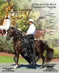 CABALLOS COLOMBIANOS: CABALLOS HISTORICOS DEL PASO FINO COLOMBIANO Brio, Horses, Animals, Animales, Animaux, Animal, Animais, Horse