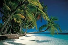 Puerto Limon - Costa Rica