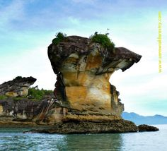 Bako National Park,established in 1957 is the oldest national park in Sarawak,East Malaysia,on the island of Borneo. It is approximately 40 kilometres by road from Kuching