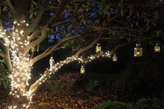 A tree with twinkle lights and lanterns is the perfect backdrop for an evening photo op. Wedding Venue: Ceresville Mansion in Frederick, Maryland  Photographer: Shaun Campbell at Creative Force Photography