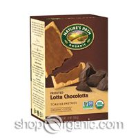Nature's Path - Organic Frosted Lotta Chocolotta Toaster Pastries,11oz
