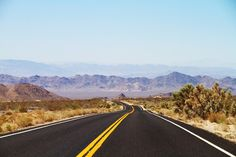 The road is bumpy as you leave the Mojave desert and enter through the Joshua Tree National Park…