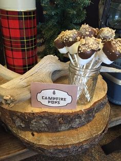 Campfire Pops from a Rustic Camping Birthday