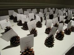 Pine cone place cards that were perfect for this December wedding!
