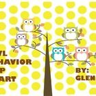 This is an owl themed classroom behavior management system. It is very eye appealing....