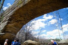 """<p>The hills of Kentucky are pretty spectacular no matter where you're standing. But the best view is hands down from the top of this behemoth sandstone arch that towers over the Daniel Boone National Forest. At 78 ft long and 65 ft high, it's a prime destination for rock climbers from around the world.<i><i><i>(Photo:</i></i> <a href=""""https://www.flickr.com/photos/arthurtlabar/13991232413/"""">Flickr/Albert T. LaBar<i>)</i></a></i></p>"""