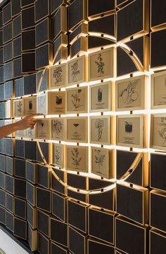 1252 Best Special Installation Images In 2019 Wayfinding
