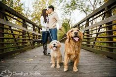 family picture with golden retriever - Google Search