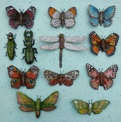Insect Collection - Embroidered Textile Artwork by Corinne Young #Assemblage #Butterflies #Moths #