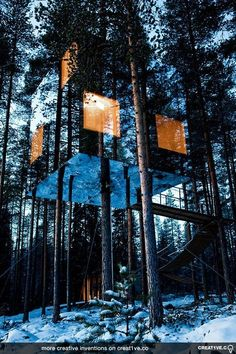 Tree hotel padded with mirrors
