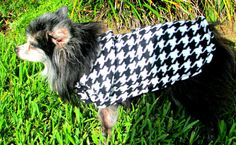 Houndstooth Dog Coat Fleece with Wide by BloomingtailsDogDuds, $23.95