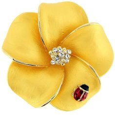 Cubic Zirconia Golden Hawaiian Plumeria Ladybug Brooch (26 CAD) ❤ liked on Polyvore featuring jewelry, brooches, brooch, accessories, yellow, flower pin brooch, polish jewelry, cz jewelry, flower brooch and flower jewellery