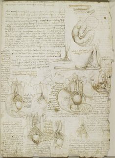 Leonardo da Vinci, 1452-1519, Italian, Studies of the foetus, related internal organs, and the arm, c.1511.  Pen and ink.  Royal Collection Trust, Windsor.
