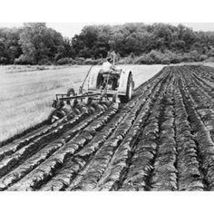 Farmer plowing a field Canvas Art - (18 x 24)