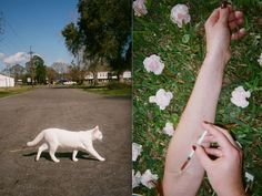 A New Photo Exhibition Takes a Hardcore Look at Life in the South | The Creators Project