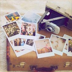 Vintage cameras, vintage luggage, and lots of polaroids!