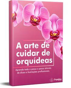Curso para cultivar da forma certa e ter lindas orquídeas espalhadas pela casa #orquideas #plantas #flores #casa #modacasa#modinha #
