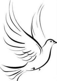 Simple dove sketch