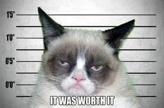 Funny pictures about Grumpy cat sings the 'soft kitty' song. Oh, and cool pics about Grumpy cat sings the 'soft kitty' song. Also, Grumpy cat sings the 'soft kitty' song. Grumpy Cat Quotes, Grumpy Cat Humor, Gato Grumpy, Grumpy Cat Mug, Funny Cats, Funny Animals, Cute Animals, Funniest Animals, Crazy Cat Lady