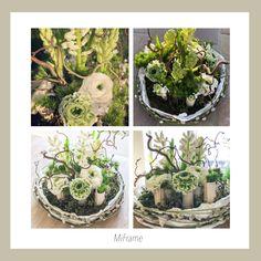 Terrarium, Home Decor, Terrariums, Decoration Home, Room Decor, Home Interior Design, Home Decoration, Interior Design