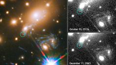 Hubble captures first-ever predicted supernova blast (PHOTO)