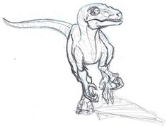 Velociraptor Sketch by ConstantScribbles Jurassic Park Tattoo, Animal Sketches, Animal Drawings, Drawing Sketches, Dinosaur Drawing, Dinosaur Art, Dinosaur Sketch, Jurassic World Movie, Raptor Dinosaur