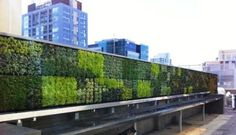 pretty handsome.  they do edible walls too with what looks like a stacking milk crate system