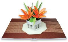 http://www.amazon.com/Paper-Blossoms-Beautiful-Bouquets-Table/dp/0811874192/ref=pd_sim_b_6?ie=UTF8