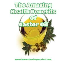 The Amazing Health Benefits And Uses of Castor Oil!  More info here: http://homesteadingsurvival.com/the-amazing-health-benefits-and-uses-of-castor-oil/