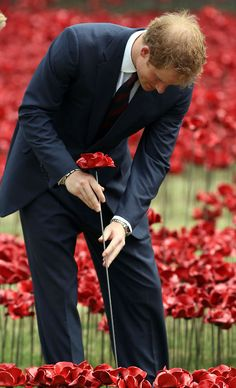 A soldier paying respect to the men who died in WWI... Tumblr