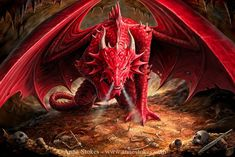 Dragons - Anne Stokes - Dragons Lair