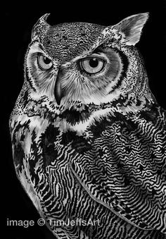 Creative Drawing Great Horned Owl Ink Drawing by TimJeffsArt on Etsy - Printed on Kodak Professional Matt paper, this is a high quality digital print of an original pen Owl Art, Bird Art, Ink Pen Drawings, Animal Drawings, Drawing Animals, Black Paper Drawing, Scratchboard Art, Scratch Art, Great Horned Owl