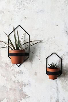 Items similar to 2 Wall Planters, Geometric Shape Planter, Black Hanging Planter, Metal Wall Planter, Plant Holder on Etsy Diy Wall Planter, Hanging Wall Planters, Planter Pots, Succulent Planters, Succulents Garden, Planting Flowers, Hanging Plants Outdoor, Indoor Planters, Concrete Planters
