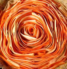 Tarte spirale au panais et à la carotte