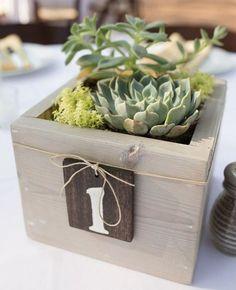 déco-mariage-originale-numéro-table-bac-bois-plantes-succulentes