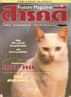 สารคดี saarakhadii サーラカディー The magazine written about the Siamese cats 雑誌のタイ猫特集(タイ語)