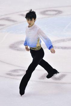 2015 Japanese Nationals
