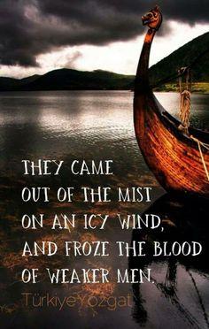 Vikings in the mist