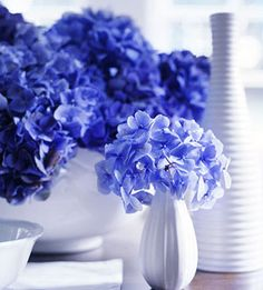 For your centerpiece, fill white vases of different shapes and sizes with watery blue-purple hydrangeas for a beautifully lush look.