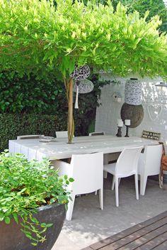 Un arbre en guise de parasol Outdoor Rooms, Outdoor Dining, Outdoor Furniture Sets, Outdoor Decor, Garden Table, Terrace Garden, Small Gardens, Outdoor Gardens, Amazing Gardens