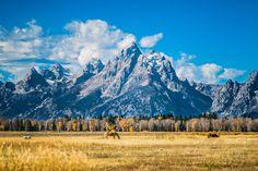 Grand Teton National Park Iconic [OC] [4240  2832] #reddit