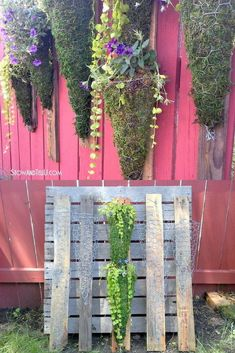 DIY Vertical Garden Ideas: If you don't have a lot of space, a vertical garden is one of the most practical solutions. It doesn't really matter what you want to grow, there's always a vertical garden design you can create. See the best DIY vertical gardening ideas plus learn what veggies and herbs will work best in your new garden space.