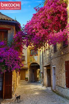 Beautiful old town of Provence #LTLB #bikooch